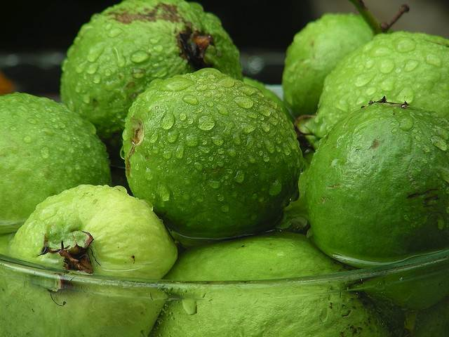 Guava – Medicinal Benefits