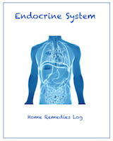 Endocrine-system-ebook-cover
