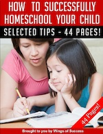 How To Successfully Home School Your Child