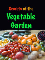 Secrets of vegetable gardening