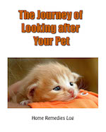 The Journey of Caring for Your Pet - Ebook Cover