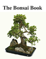 The bondai Book -ebook cover