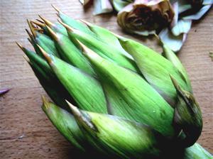 Artichoke_Food_plant