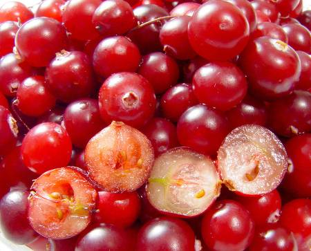 Cranberry Juice – The Amazing Benefits of Cranberries