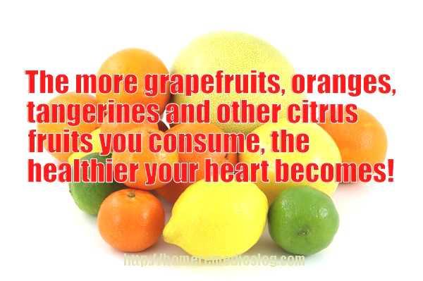 citrus fruit memeoptimized