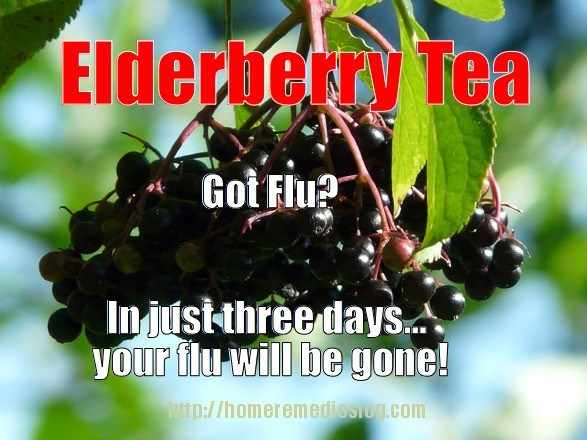 elderberry tea meme