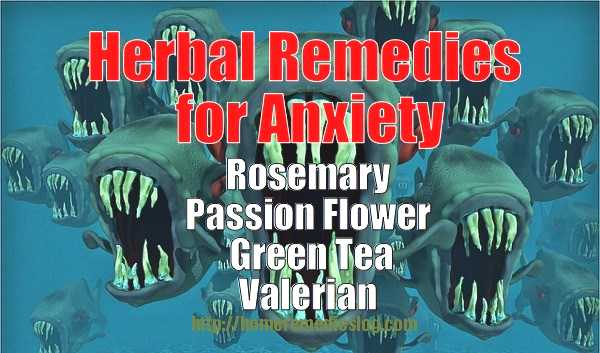 herbal remedies for anxiety - meme