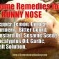 Take Advantage Of Home Remedies for Runny Nose