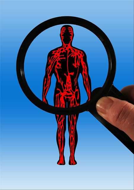 varicose veins body image