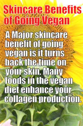 vegan skincare memeoptimized