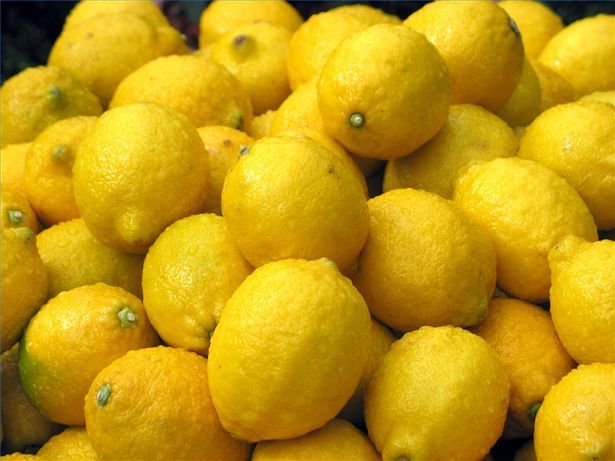 Lemon – Good for the Kitchen and the Health!