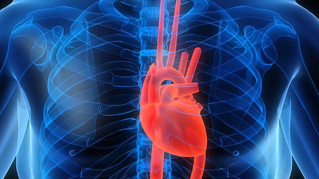5 Tips for Preventing Heart Disease