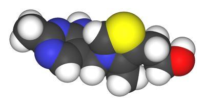 Thiamine – Vitamin B1: An Overview