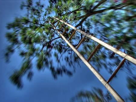 Vertigo image of high ladder