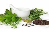 Looking at Herbal Remedies